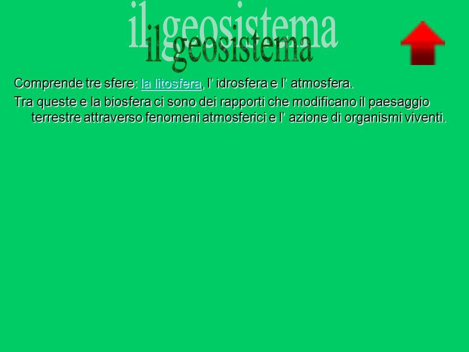Il biosistema È costituito dalla biosfera cioè le forme di vita presenti in essa.