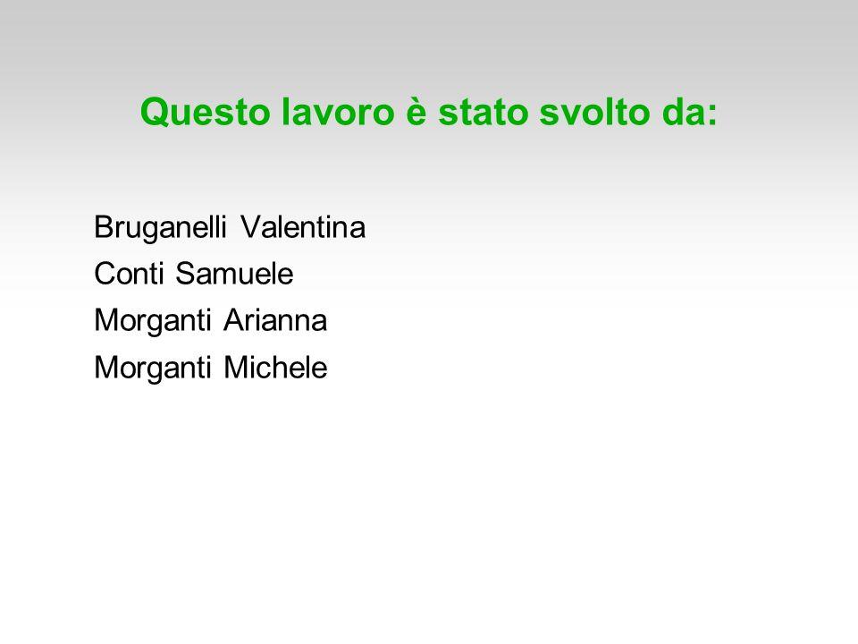 Questo lavoro è stato svolto da: Bruganelli Valentina Conti Samuele Morganti Arianna Morganti Michele