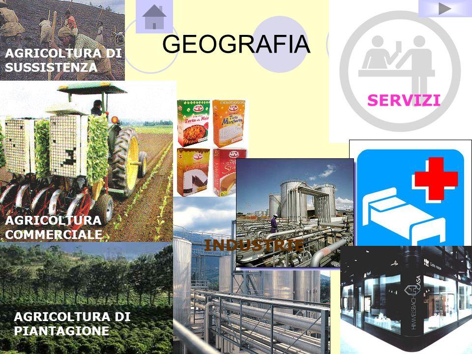 GEOGRAFIA AGRICOLTURA DI SUSSISTENZA AGRICOLTURA DI PIANTAGIONE AGRICOLTURA COMMERCIALE INDUSTRIE SERVIZI