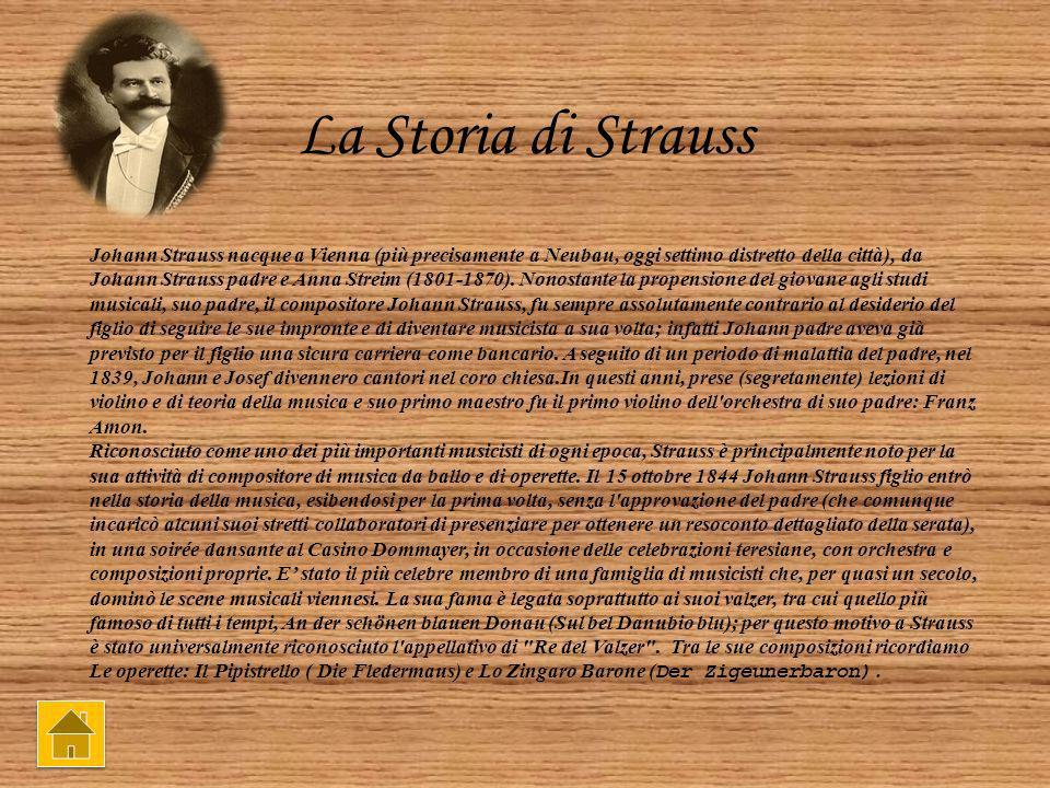 La Storia di Strauss Johann Strauss nacque a Vienna (più precisamente a Neubau, oggi settimo distretto della città), da Johann Strauss padre e Anna Streim (1801-1870).