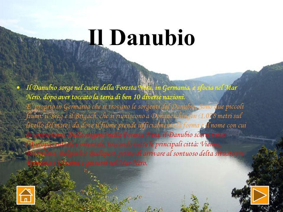 Il Danubio sorge nel cuore della Foresta Nera, in Germania, e sfocia nel Mar Nero, dopo aver toccato la terra di ben 10 diverse nazioni.