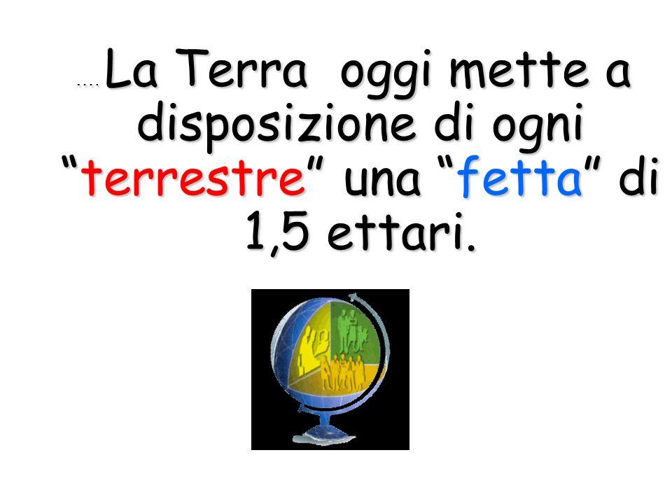 ….La Terra oggi mette a disposizione di ogniterrestre una fetta di 1,5 ettari.