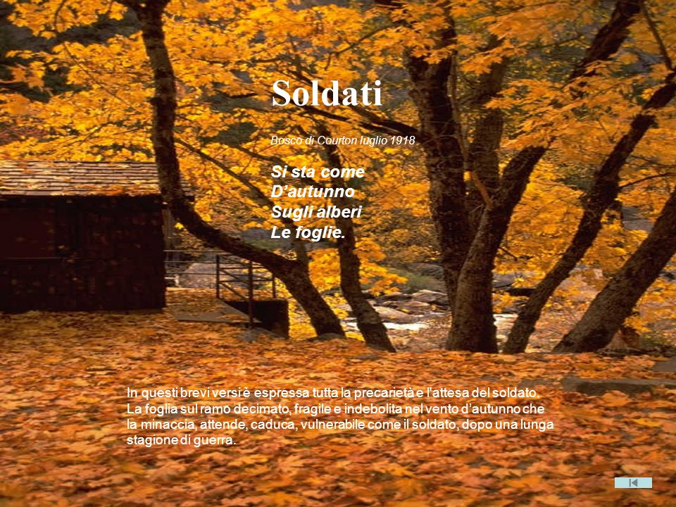 Bosco di Courton luglio 1918 Si sta come Dautunno Sugli alberi Le foglie. In questi brevi versi è espressa tutta la precarietà e l'attesa del soldato.