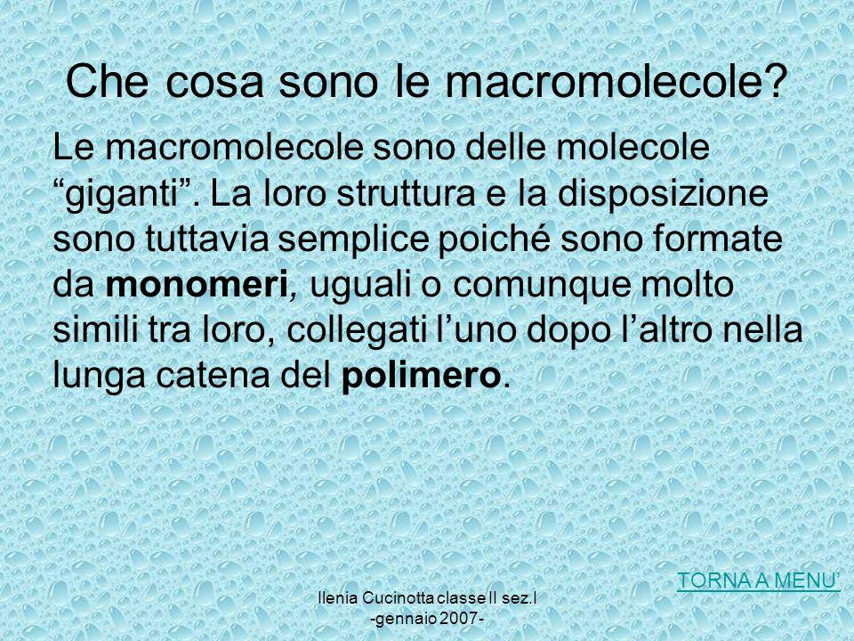 Ilenia Cucinotta classe II sez.I -gennaio 2007- Che cosa sono le macromolecole? Le macromolecole sono delle molecole giganti. La loro struttura e la d