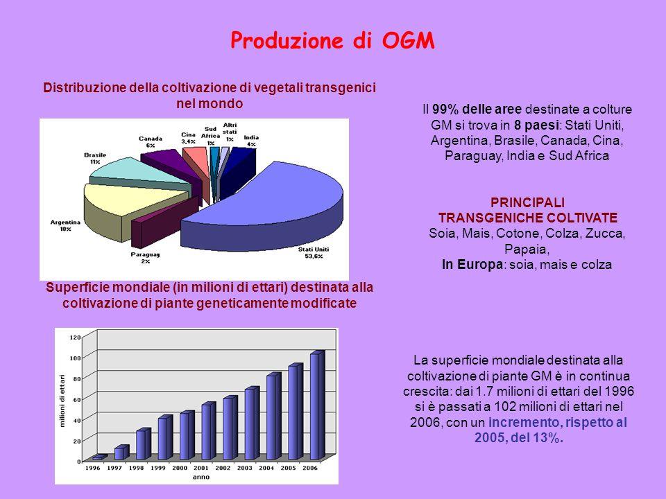 Produzione di OGM La superficie mondiale destinata alla coltivazione di piante GM è in continua crescita: dai 1.7 milioni di ettari del 1996 si è pass