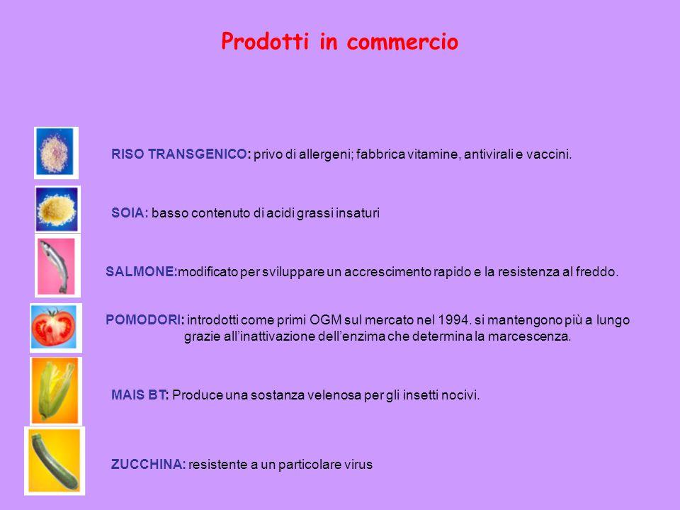 Prodotti in commercio SALMONE:modificato per sviluppare un accrescimento rapido e la resistenza al freddo. POMODORI: introdotti come primi OGM sul mer