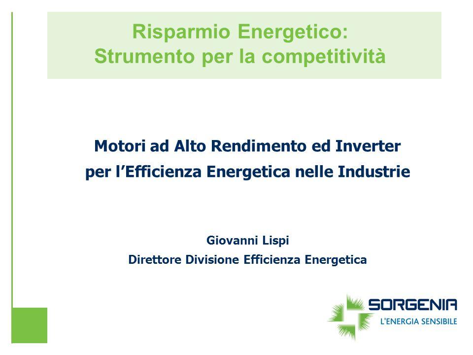 Risparmio Energetico: Strumento per la competitività Motori ad Alto Rendimento ed Inverter per lEfficienza Energetica nelle Industrie Giovanni Lispi D