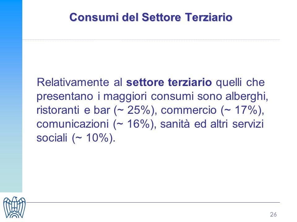 26 Consumi del Settore Terziario Relativamente al settore terziario quelli che presentano i maggiori consumi sono alberghi, ristoranti e bar (~ 25%), commercio (~ 17%), comunicazioni (~ 16%), sanità ed altri servizi sociali (~ 10%).