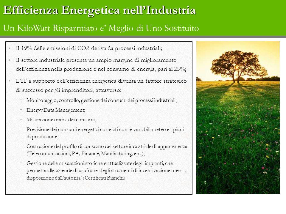 Il 19% delle emissioni di CO2 deriva da processi industriali; Il settore industriale presenta un ampio margine di miglioramento dellefficienza nella p