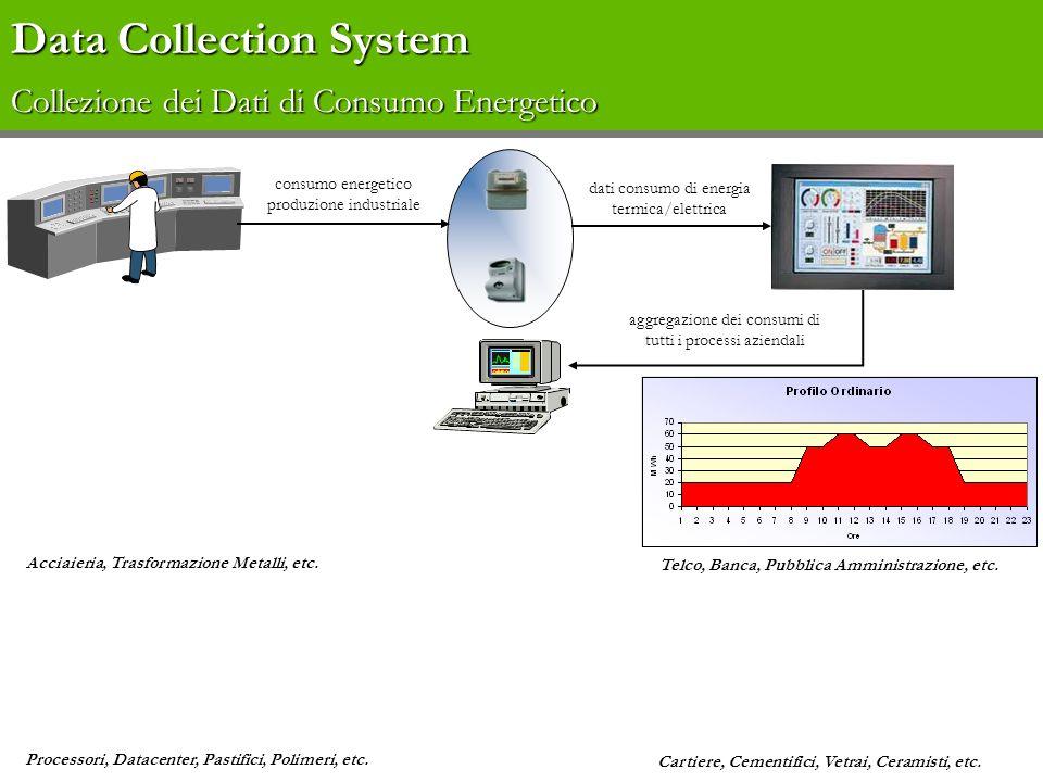 Data Collection System Data Collection System Vantaggi per lEnergy Manager Collezionare in tempo reale i dati di consumo dei diversi reparti ; Gestire attivamente lo sbilanciamento operando con azioni correttive attraverso il diretto interfacciamento con gli impianti; Collezionare in tempo reale i dati di prelievo di energia dai fornitori; Ottimizzare i piani di produzione; Identificare le aree di inefficienza energetica; Costruire la classe di appartenenza del profilo di consumo.