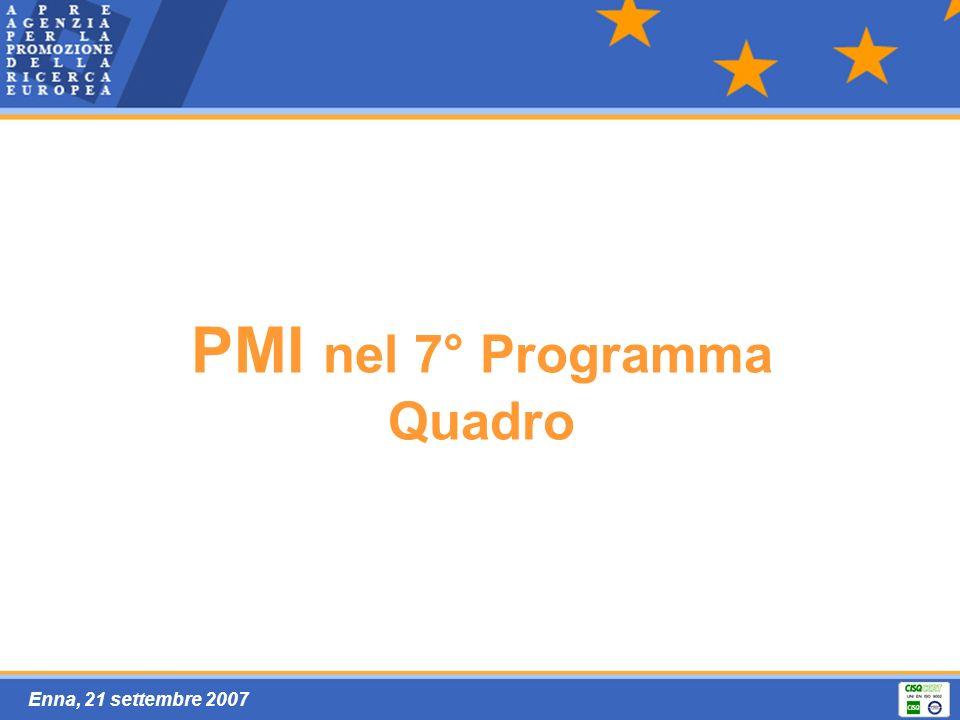 Enna, 21 settembre 2007 PMI nel 7° Programma Quadro