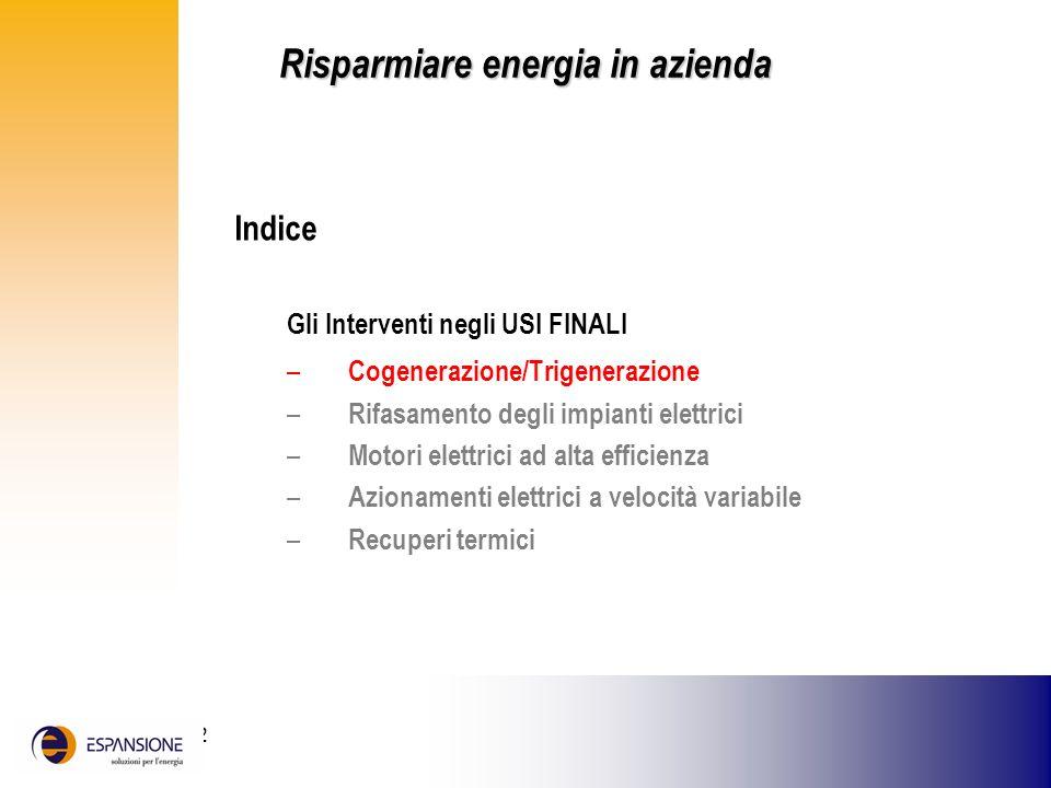 25 giugno 2002 Indice Gli Interventi negli USI FINALI – Cogenerazione/Trigenerazione – Rifasamento degli impianti elettrici – Motori elettrici ad alta