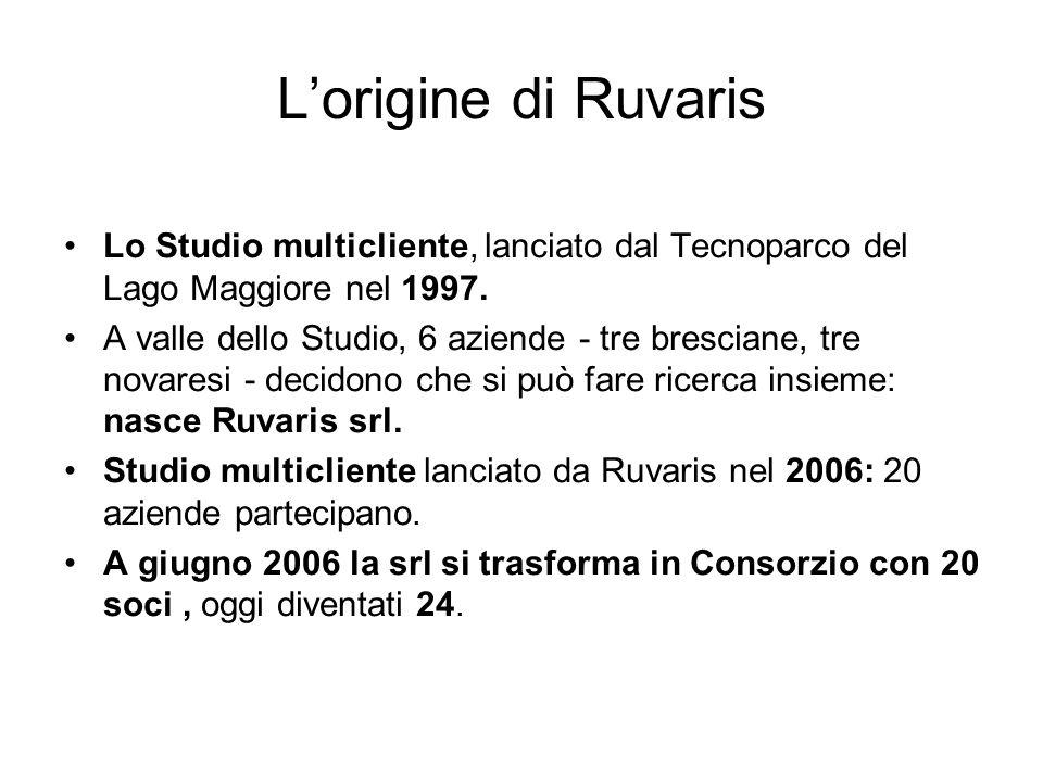 Lorigine di Ruvaris Lo Studio multicliente, lanciato dal Tecnoparco del Lago Maggiore nel 1997. A valle dello Studio, 6 aziende - tre bresciane, tre n