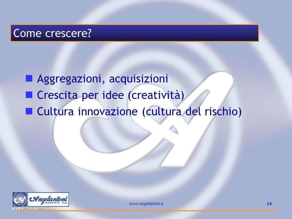 12www.angelantoni.it Aggregazioni, acquisizioni Crescita per idee (creatività) Cultura innovazione (cultura del rischio) Come crescere?