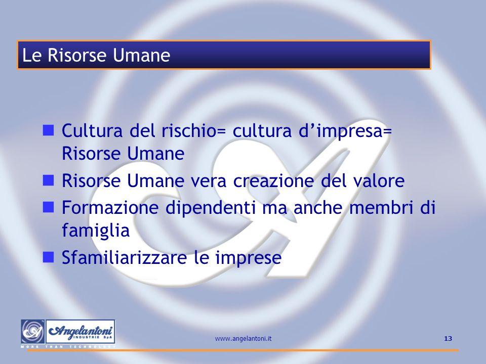 13www.angelantoni.it Cultura del rischio= cultura dimpresa= Risorse Umane Risorse Umane vera creazione del valore Formazione dipendenti ma anche membr