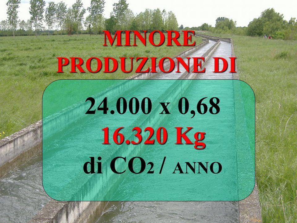 MINORE PRODUZIONE DI 16.320 Kg 24.000 x 0,68 16.320 Kg di CO 2 / ANNO