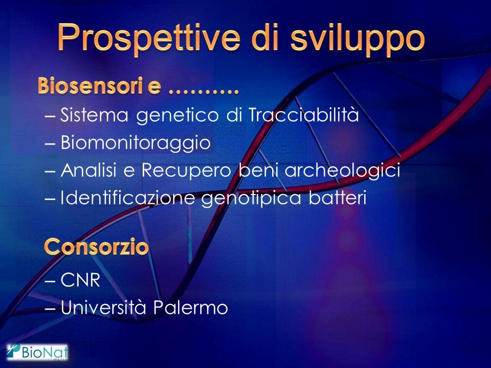 – Sistema genetico di Tracciabilità – Biomonitoraggio – Analisi e Recupero beni archeologici – Identificazione genotipica batteri – CNR – Università Palermo