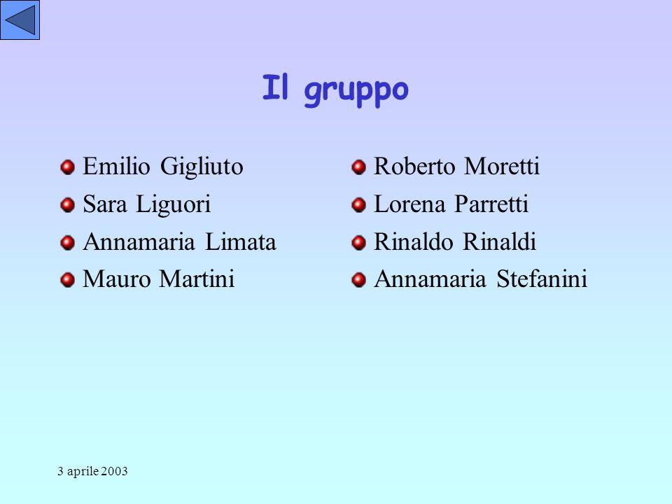 3 aprile 2003 Il gruppo Emilio Gigliuto Sara Liguori Annamaria Limata Mauro Martini Roberto Moretti Lorena Parretti Rinaldo Rinaldi Annamaria Stefanini