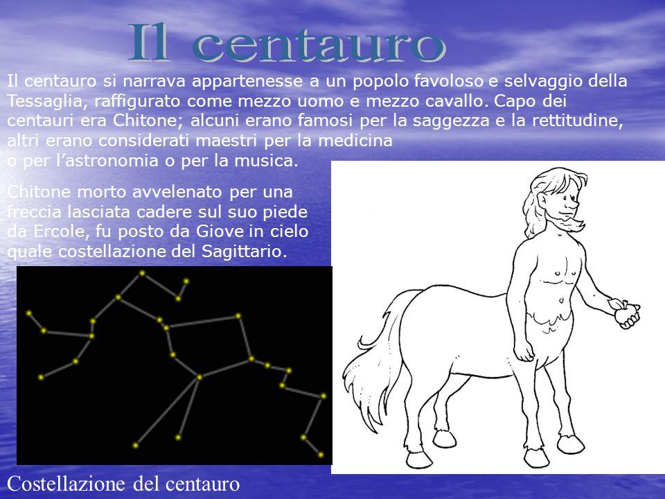 Il centauro si narrava appartenesse a un popolo favoloso e selvaggio della Tessaglia, raffigurato come mezzo uomo e mezzo cavallo. Capo dei centauri e