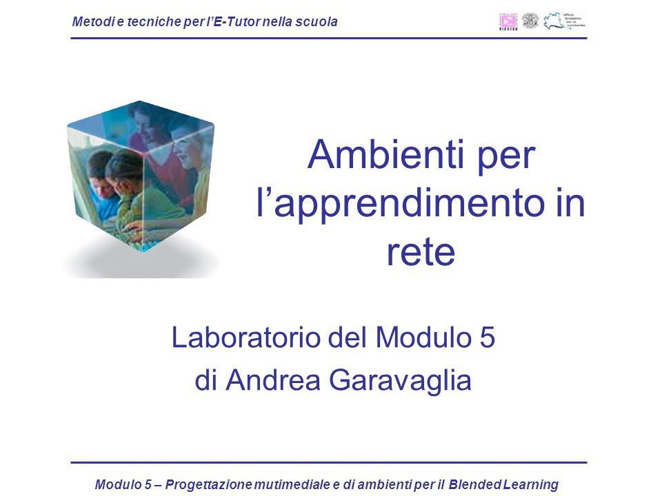 Metodi e tecniche per lE-Tutor nella scuola Modulo 5 – Progettazione mutimediale e di ambienti per il Blended Learning Ambienti per lapprendimento in