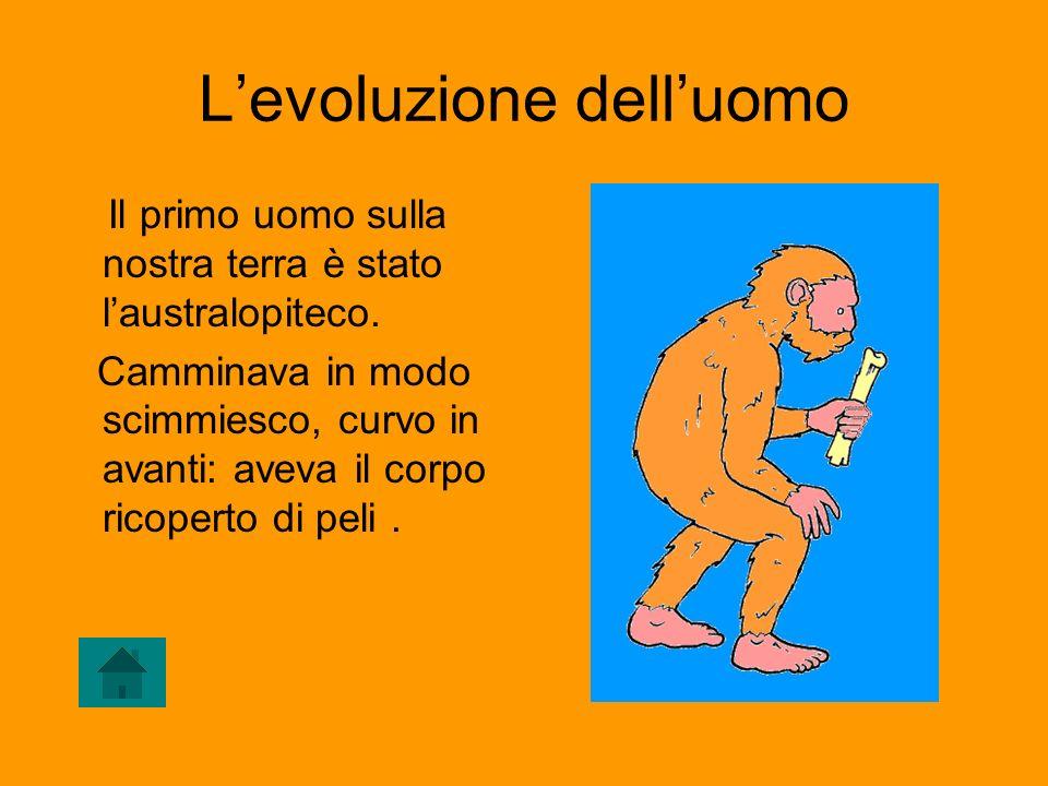 Levoluzione delluomo Luomo habilis impara a camminare e a muoversi con più scioltezza.