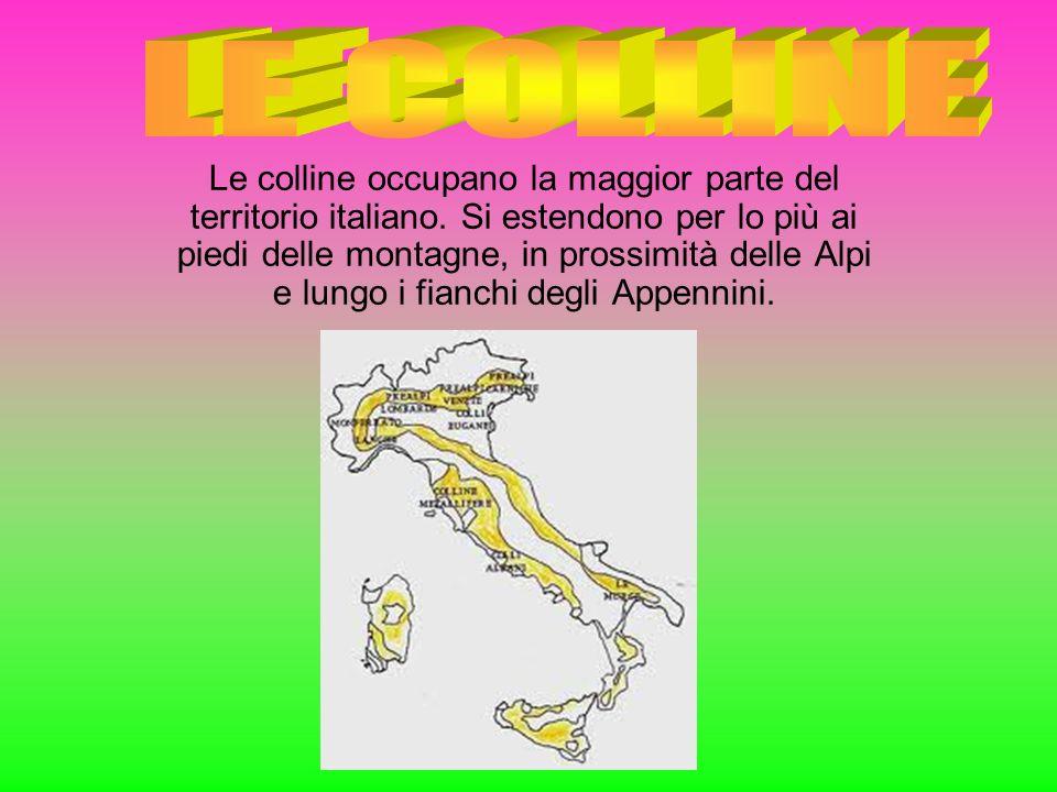 Le colline occupano la maggior parte del territorio italiano. Si estendono per lo più ai piedi delle montagne, in prossimità delle Alpi e lungo i fian