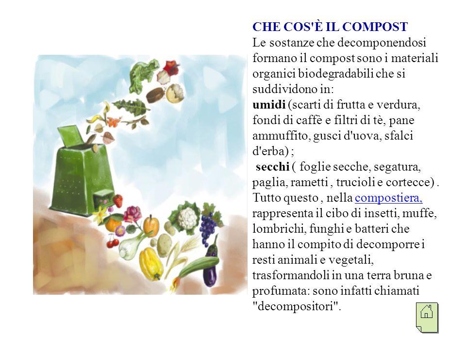 COME SI PREPARA IL COMPOST Il contenitore in cui viene preparato il compost, si chiama compostiera e serve per fare il compostaggio nei giardini, senza generare cattivi odori.