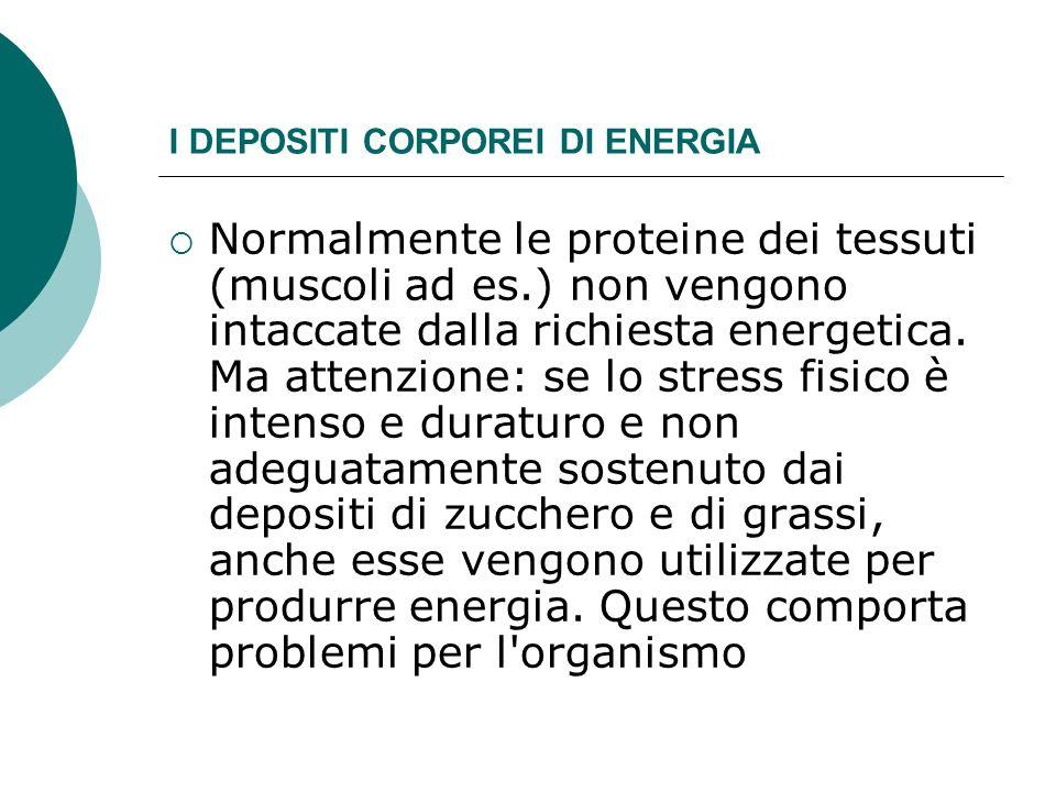 I DEPOSITI CORPOREI DI ENERGIA Normalmente le proteine dei tessuti (muscoli ad es.) non vengono intaccate dalla richiesta energetica. Ma attenzione: s