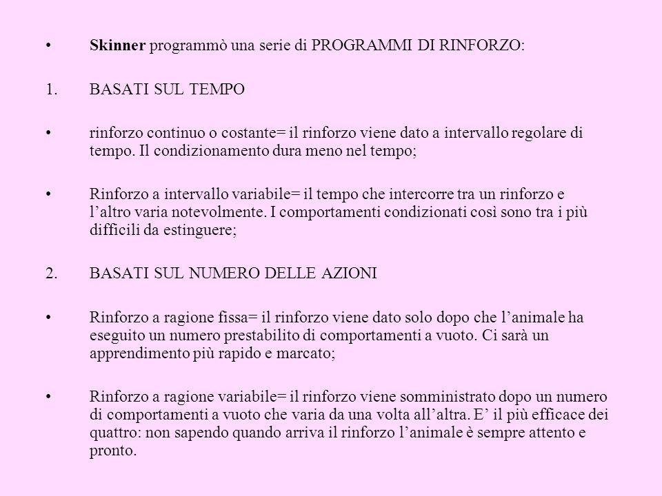 Skinner programmò una serie di PROGRAMMI DI RINFORZO: 1.BASATI SUL TEMPO rinforzo continuo o costante= il rinforzo viene dato a intervallo regolare di tempo.