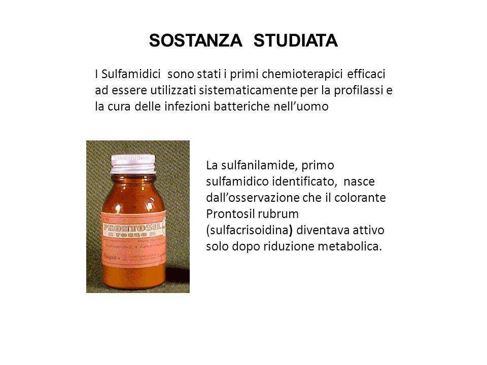 Sulfamidici magici proiettili per la vita 5^B LICEO SCIENZE SOCIALI TRADIZIONALE 5^A E 5^D LICEO SCIENZE SOCIALI BIOMEDICO