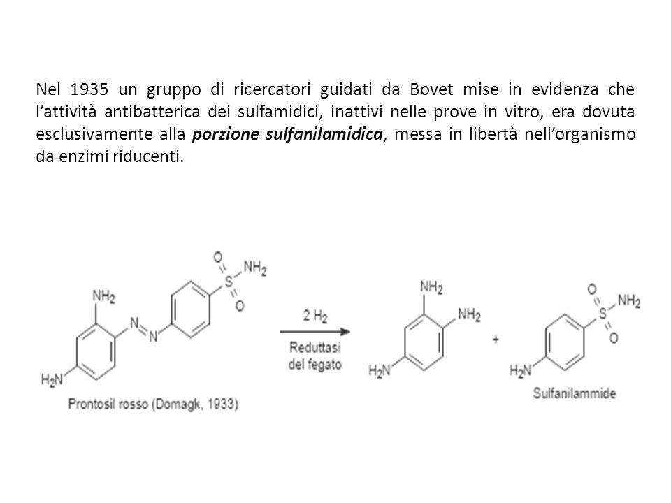 Nel 1935 un gruppo di ricercatori guidati da Bovet mise in evidenza che lattività antibatterica dei sulfamidici, inattivi nelle prove in vitro, era dovuta esclusivamente alla porzione sulfanilamidica, messa in libertà nellorganismo da enzimi riducenti.