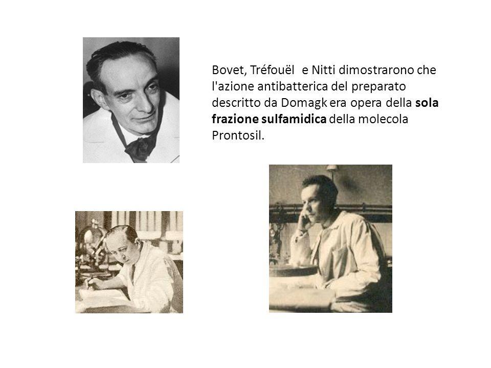 Daniel Bovet Bovet, Tréfouël e Nitti dimostrarono che l azione antibatterica del preparato descritto da Domagk era opera della sola frazione sulfamidica della molecola Prontosil.