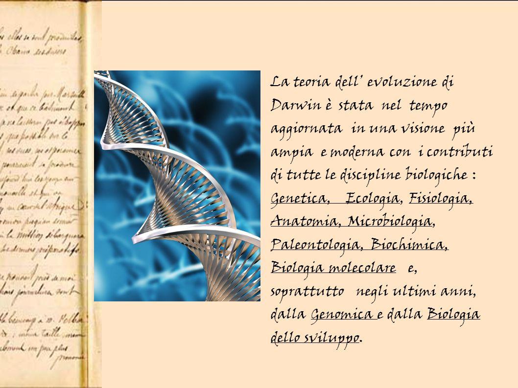 La teoria dell evoluzione di Darwin è stata nel tempo aggiornata in una visione più ampia e moderna con i contributi di tutte le discipline biologiche : Genetica, Ecologia, Fisiologia, Anatomia, Microbiologia, Paleontologia, Biochimica, Biologia molecolare e, soprattutto negli ultimi anni, dalla Genomica e dalla Biologia dello sviluppo.