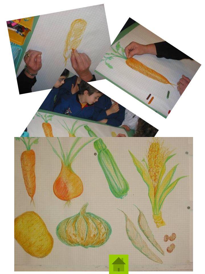 Le Insegnanti della Scuola Primaria di Calalzo che hanno partecipato al Progetto di Educazione Alimentare: Cono Genova Vincenza Giacobbi Bianca Maria Soravia Letizia