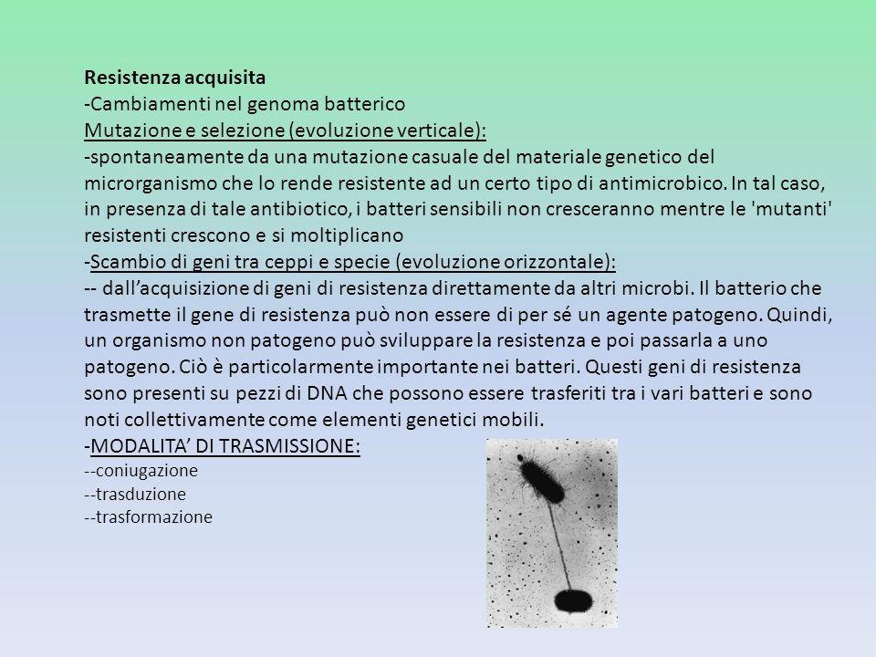 Resistenza acquisita -Cambiamenti nel genoma batterico Mutazione e selezione (evoluzione verticale): -spontaneamente da una mutazione casuale del mate