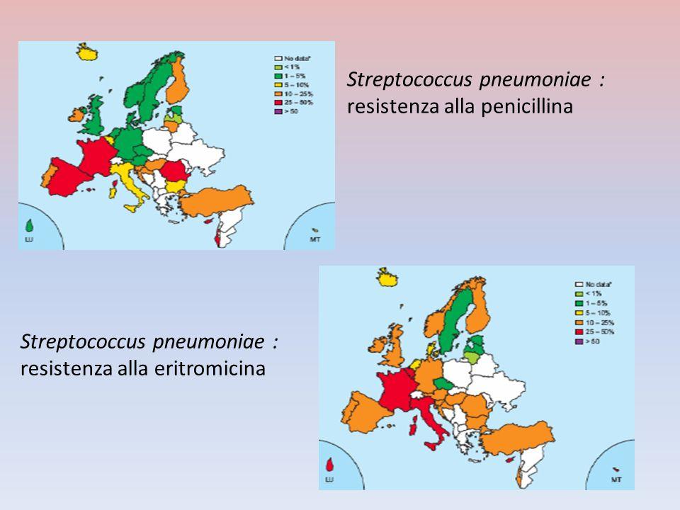 Streptococcus pneumoniae : resistenza alla penicillina Streptococcus pneumoniae : resistenza alla eritromicina