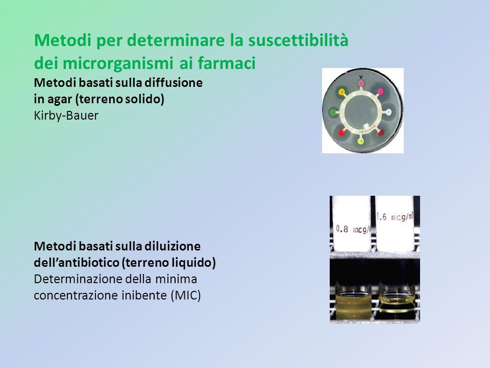Metodi per determinare la suscettibilità dei microrganismi ai farmaci Metodi basati sulla diffusione in agar (terreno solido) Kirby-Bauer Metodi basat