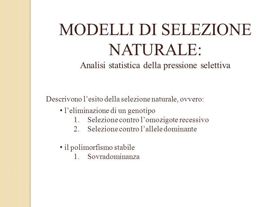MODELLI DI SELEZIONE NATURALE: Analisi statistica della pressione selettiva Descrivono lesito della selezione naturale, ovvero: leliminazione di un ge