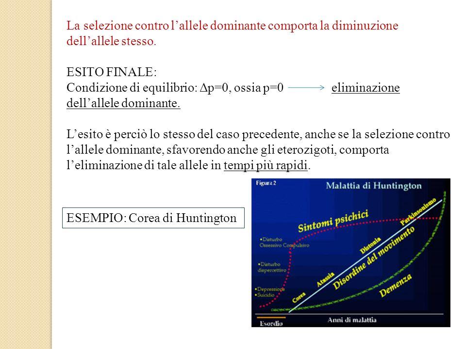 La selezione contro lallele dominante comporta la diminuzione dellallele stesso. ESITO FINALE: Condizione di equilibrio: Δp=0, ossia p=0 eliminazione