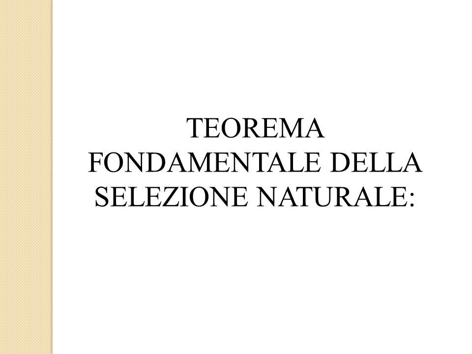 TEOREMA FONDAMENTALE DELLA SELEZIONE NATURALE: