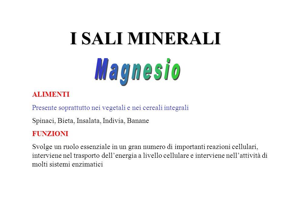I SALI MINERALI ALIMENTI Presente soprattutto nei vegetali e nei cereali integrali Spinaci, Bieta, Insalata, Indivia, BananeFUNZIONI Svolge un ruolo e