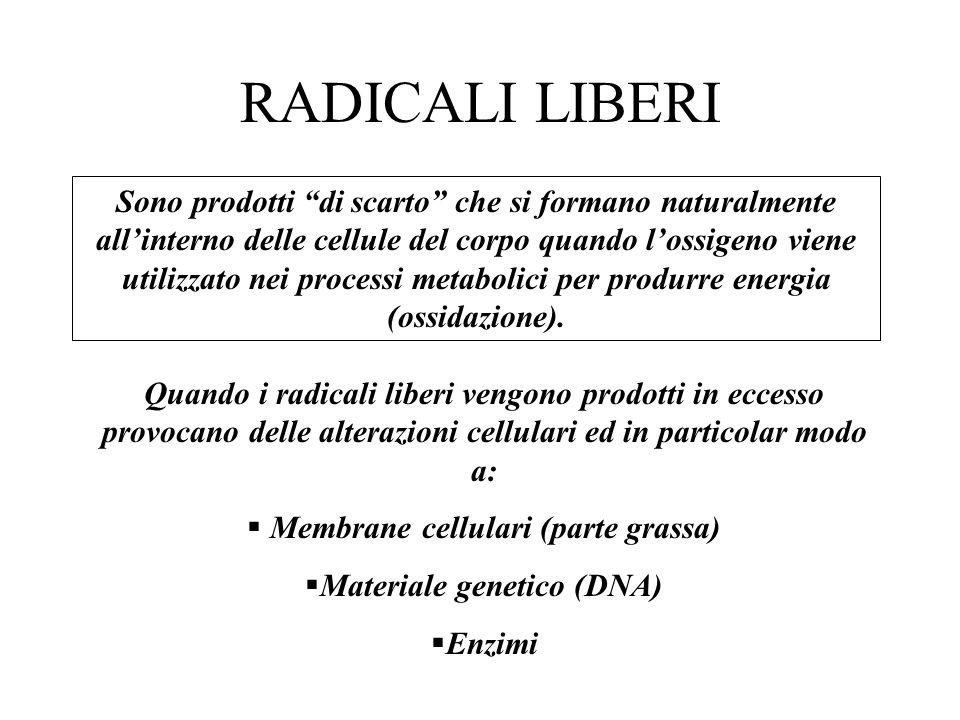 RADICALI LIBERI Quando i radicali liberi vengono prodotti in eccesso provocano delle alterazioni cellulari ed in particolar modo a: Membrane cellulari