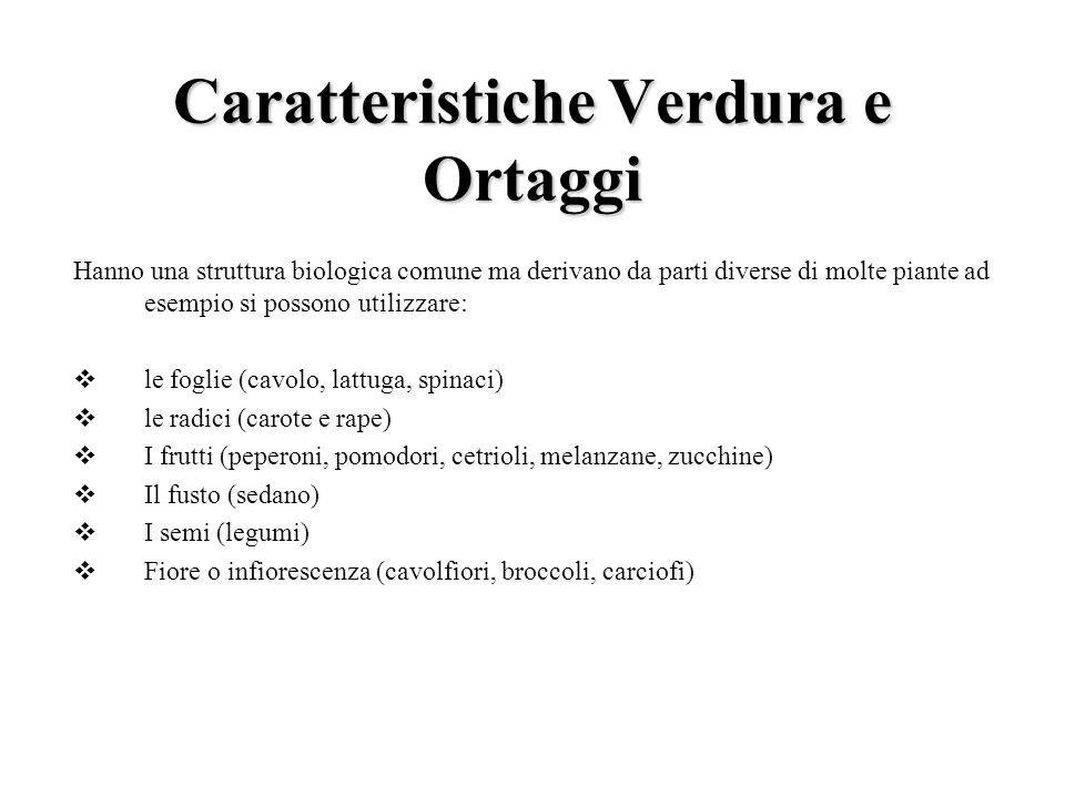 Caratteristiche Verdura e Ortaggi Hanno una struttura biologica comune ma derivano da parti diverse di molte piante ad esempio si possono utilizzare: