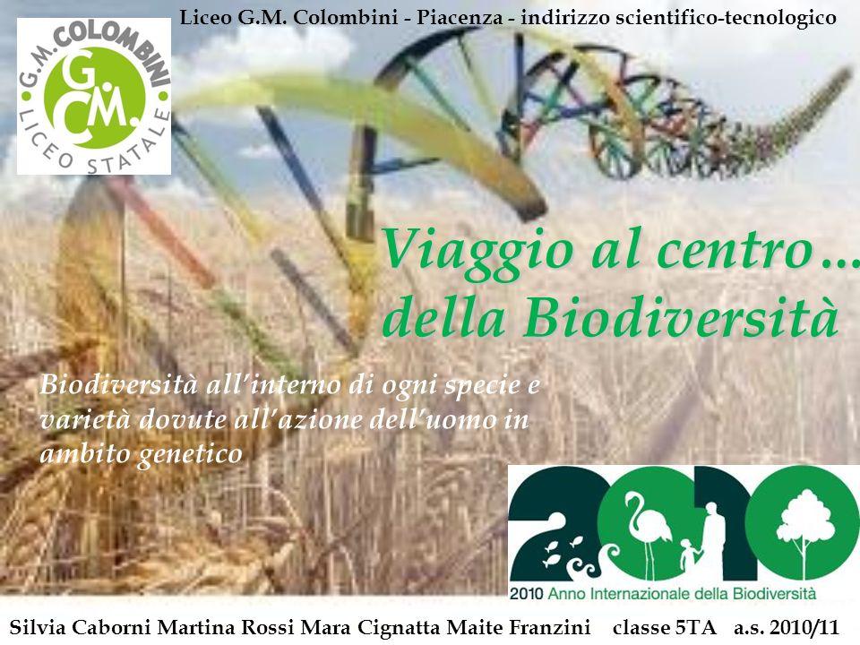 Viaggio al centro… della Biodiversità Viaggio al centro… della Biodiversità Silvia Caborni Martina Rossi Mara Cignatta Maite Franzini classe 5TA a.s.