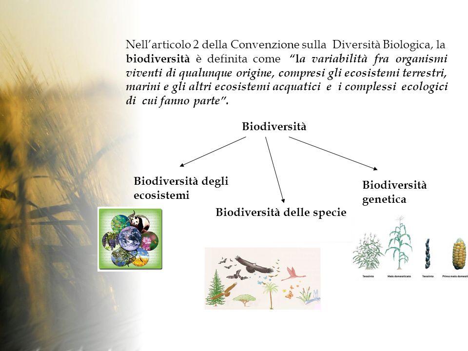 Nellarticolo 2 della Convenzione sulla Diversità Biologica, la biodiversità è definita come l a variabilità fra organismi viventi di qualunque origine, compresi gli ecosistemi terrestri, marini e gli altri ecosistemi acquatici e i complessi ecologici di cui fanno parte.
