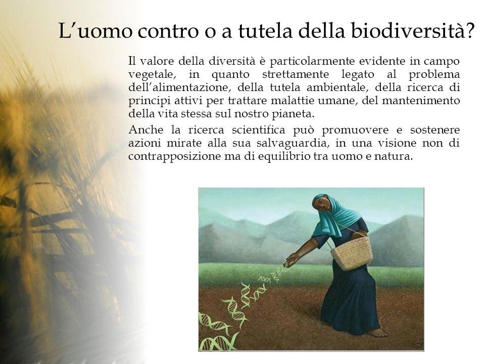 Luomo contro o a tutela della biodiversità.