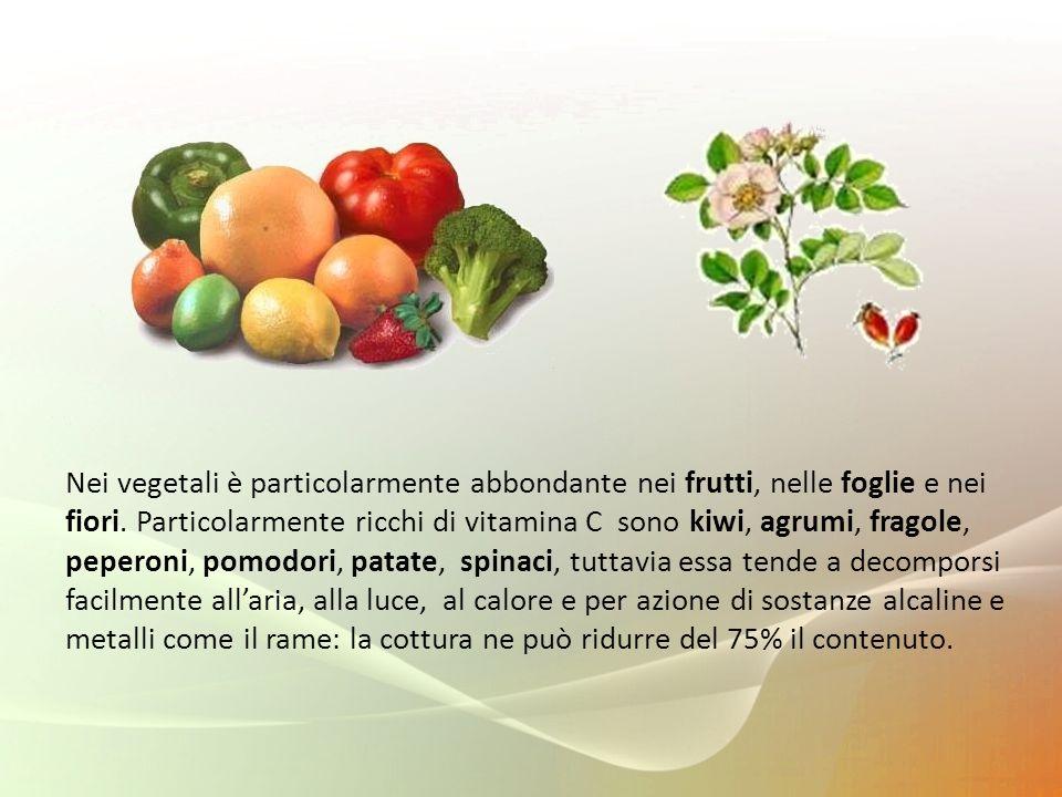 Nei vegetali è particolarmente abbondante nei frutti, nelle foglie e nei fiori. Particolarmente ricchi di vitamina C sono kiwi, agrumi, fragole, peper