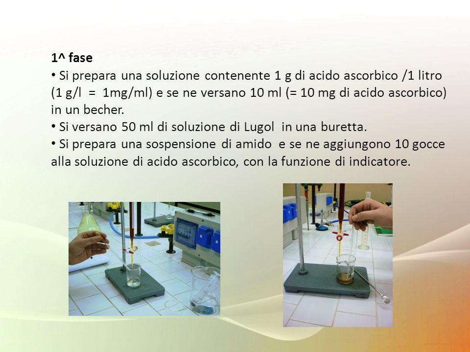 1^ fase Si prepara una soluzione contenente 1 g di acido ascorbico /1 litro (1 g/l = 1mg/ml) e se ne versano 10 ml (= 10 mg di acido ascorbico) in un