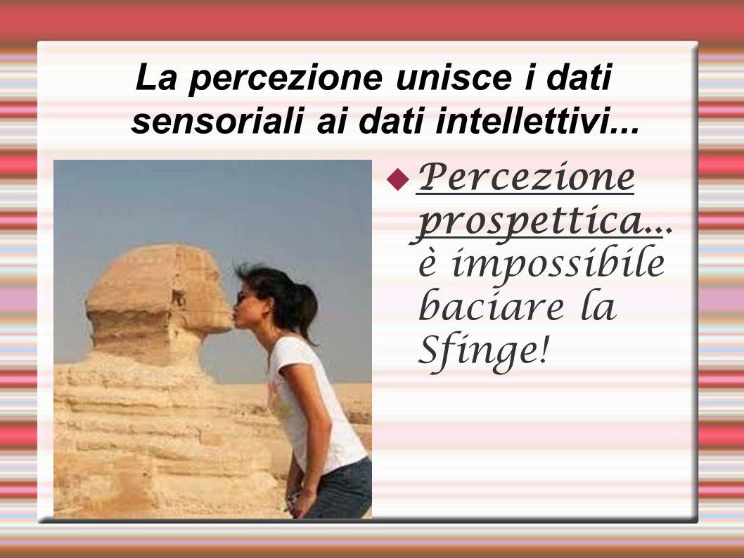 La percezione unisce i dati sensoriali ai dati intellettivi...
