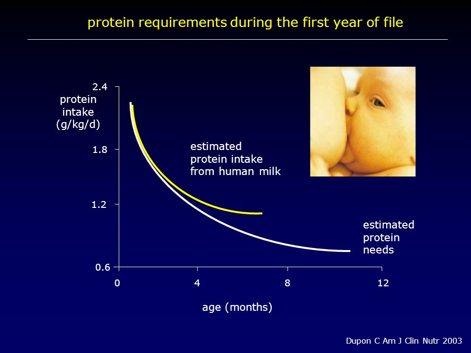 protein requirements during the first year of file 1.8 0.6 protein intake (g/kg/d) 2.4 age (months) 04812 Dupon C Am J Clin Nutr 2003 1.2 estimated pr